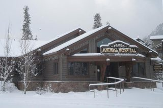 Frisco Animal Hospital surrounded by the spring snow