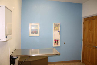 Exam room 2 Great Oaks Animal Hospital