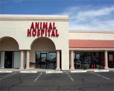 Red Mountain Animal Hospital in Mesa