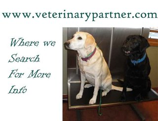 Veterinarypartner Frisco Animal Hospital