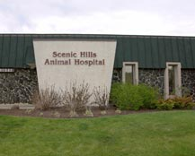 St Paul veterinary entrance of Scenic Hills Animal Hospital