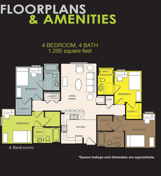 Shared Amp Furnished Apartments For Students In Orlando Orion On Orpington Floor Plans