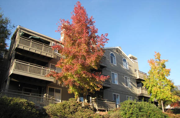 Exterior apartment building multifamily housing for rent Folsom Ranch