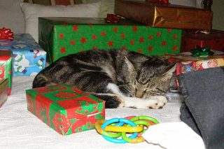 Socks Neely sleeping amoung wrapped presents