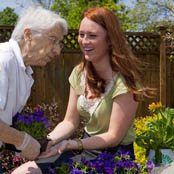 Senior resident and staff plant flowers