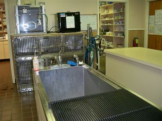 Cleaning area at johson mckee clinic Johnson-McKee Animal Hospital