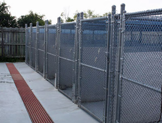 Exercise kennels boarding Roanoke Animal Hospital