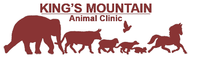 Kings Mountain Animal Clinic