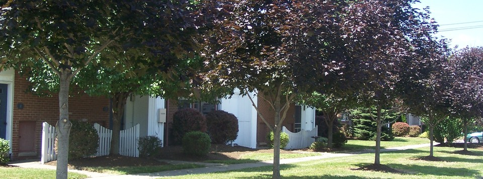 Townhomes at Spring Meadows, Romulus, NY