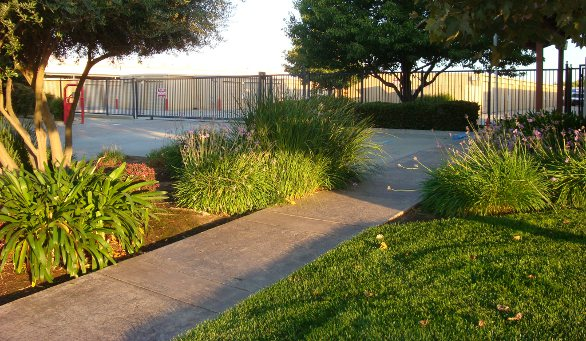 Landscaped fenced grounds Harbour Point Self Storage