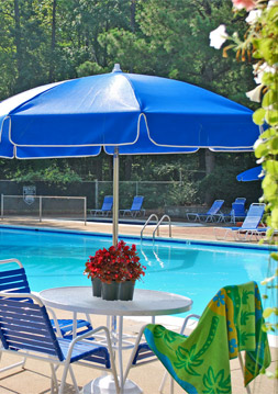 Pool St. John's Wood