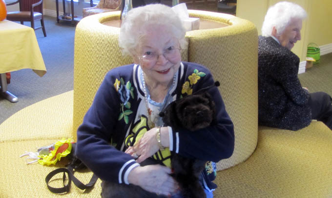 Pet friendly housing Highgate Senior Living