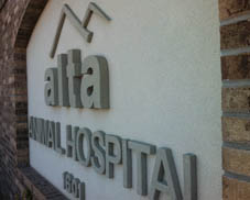 Welcome to Alta Animal Hospital in Pocatello, ID