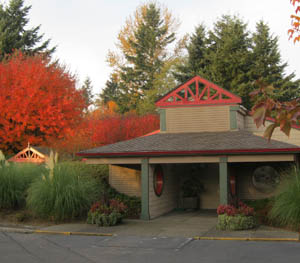 About Kitsap Veterinary Hospital in Port Orchard