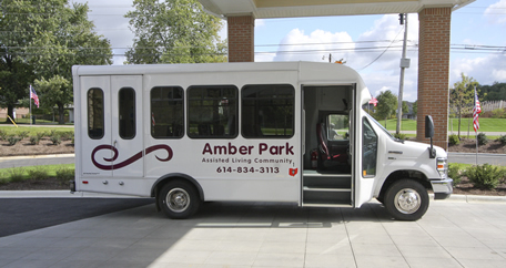 Bus Amber Park