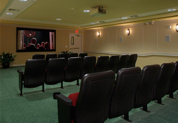 Theatre Room in Waltonwood on Main
