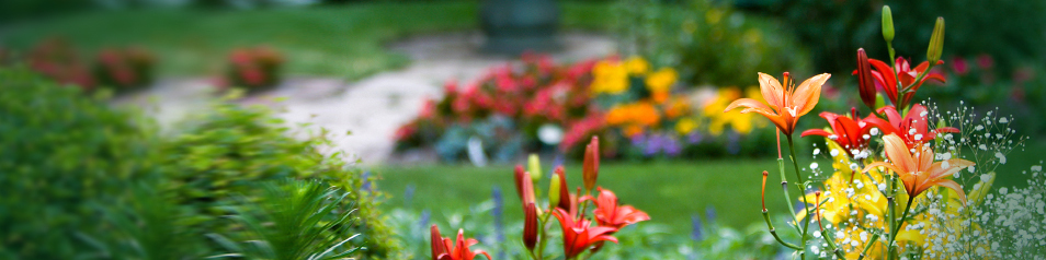 Garden View Care Centers offers senior care in St. Louis, MO.