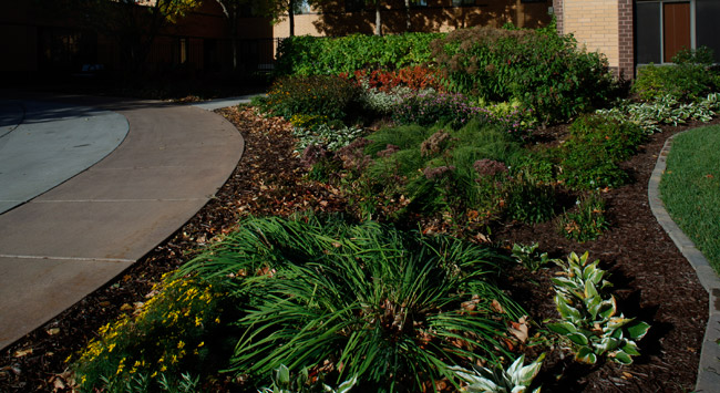Well landscaped grounds at Minneapolis senior living community