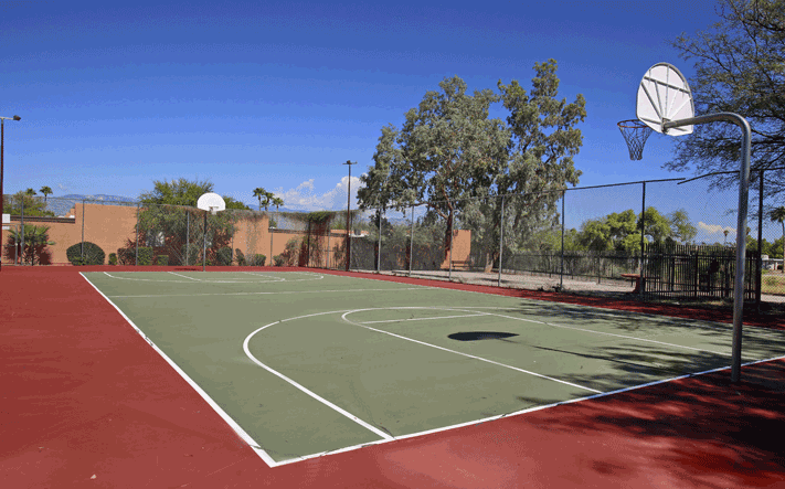 Amenities basketball cour